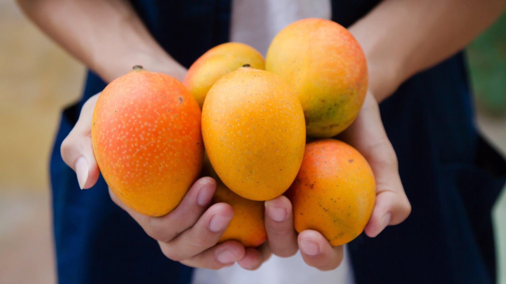 Descubre los manjares de la Costa Tropical y tres recetas sorprendentes
