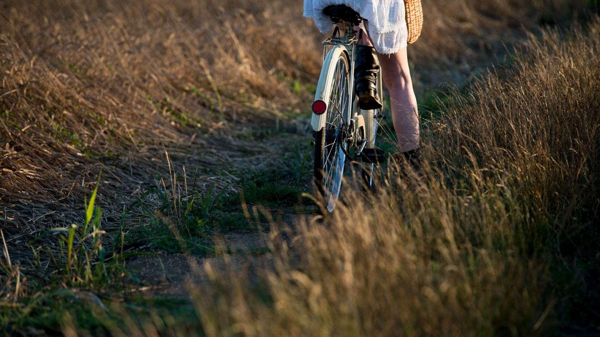 Tres rutas en bicicleta para pedalear el verano y disfrutarlo sobre ruedas