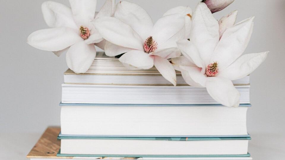 Libros de relatos: cuando la brevedad nos ilumina