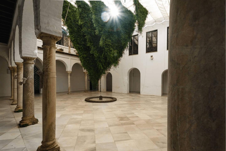 Crear sin prisa - Flora - Cervezas Alhambra